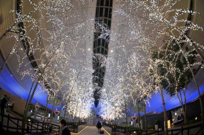 東京横浜の夜景を満喫+王道を観光する旅 プロローグ