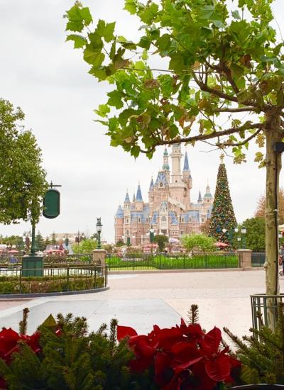 Disney祭りだった2019年♡  締めくくりは上海Disney!!Part 1