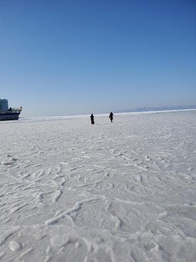 念願の海面散歩