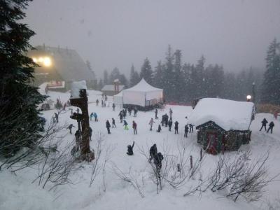 バンクーバー5日間 2日目「グラウスの雪」