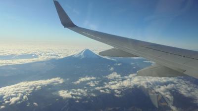 """令和2年元旦 空の旅 HND=NGO JAL201 """"富士山見えました"""""""