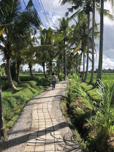 4度目のバリの旅(アメッド&ウブド8日間の旅)⑥最終日は散歩とスパで癒される