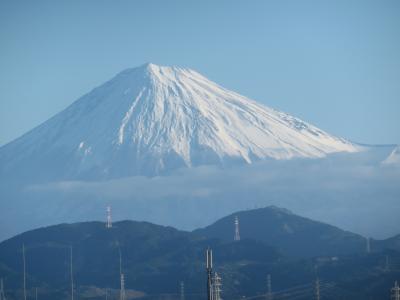 2020年元旦3ヶ日のミニ旅行記:静岡の動物園遠征2日間から3日に延期した近所の神社の初詣まで