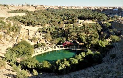 チュニジア周遊とジェルバ島(4)----トズールとその近郊