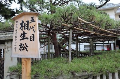謡曲『高砂』の舞台への旅 【高砂神社、尾上神社編】