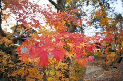 武家屋敷の紅葉に浸るふらっと角館の旅