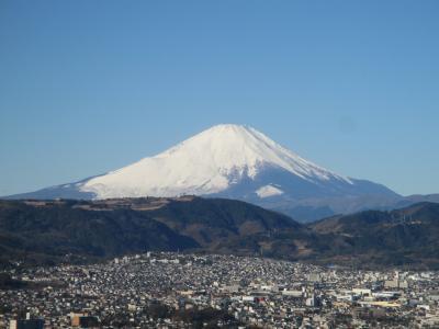 富士山を拝んで、新年を迎えたことを実感する