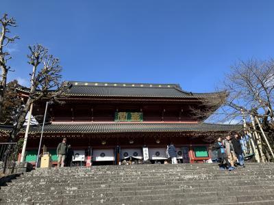 202001-01_日光で初もうで New Year in Nikko <TOCHIGI>