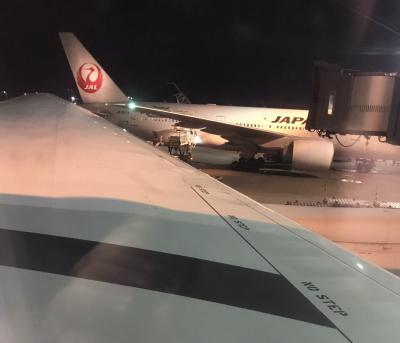 JALプレエコでシンガポールへ(からのミャンマー)。 JGC修行
