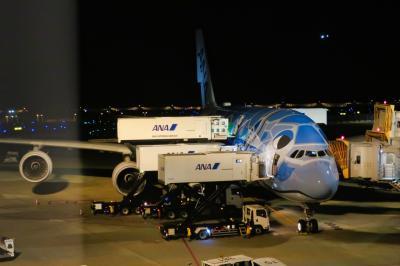 【2019海外】土日でハワイに行ってみた。#01 ~往路編 A380フライングホヌ 1号機「ラニ -Lani-」~