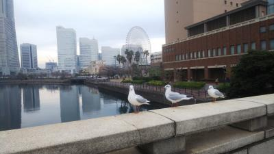 年末、横浜に一泊。