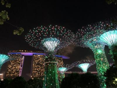 シンガポールの旅 ☆ 2019~2020 vol.2