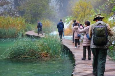 2019年11月クロアチア他(16) プリトヴィッツェ湖群国立公園