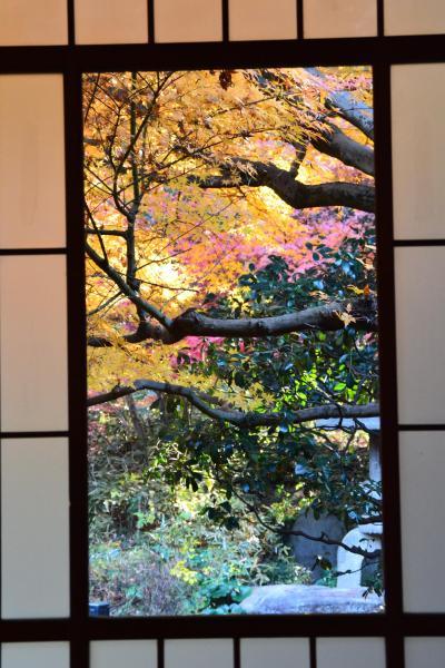 チャリで巡る紅葉狩り  加賀百万石前田家の華族のお屋敷は絢爛豪華だった!