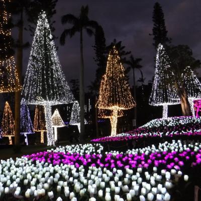 2019-2020年末年始・沖縄3・元旦の普天間宮と東南植物楽園ひかりの散歩道