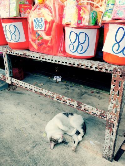 年末年始は欲張りに♪ベトナム&タイで麺食い旅 〈vol.6バンコク〉