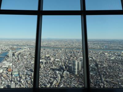 [新春恒例] 東京スカイツリーに登ってきた in 2020