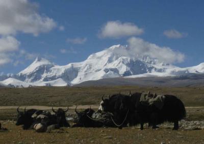 ヒマラヤ山脈 北面 大展望 2013年9月  ラサ・オールドティンリー編