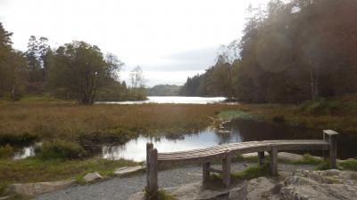 秋のイングランド カントリーサイドを歩く 17 湖水地方(3)ホークスヘッド~ターンハウズ~コニストン
