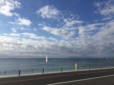 2020年☆新年静岡旅行