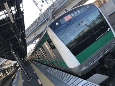 <祝 JR・相鉄直通線開業! !>  JR・相鉄直通線に乗って「羽沢横浜国大駅」へ行ってきた。
