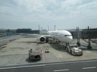 2019 初のシンガポールへ修業フライト【3日目】羽田へ帰京フライト