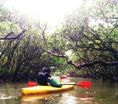 年末・雨でも楽しかった奄美大島1