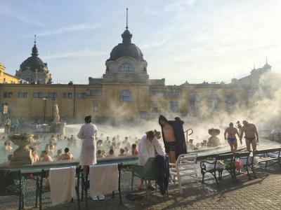 2019年越し ブダペスト・ウィーン旅行 #4