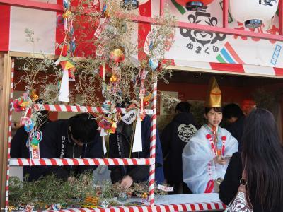 2020年の初詣+ウインターチューリップ@鎌倉~江の島