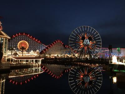 9歳子連れ★カリフォルニア州旅行②★アナハイムディズニーパーク