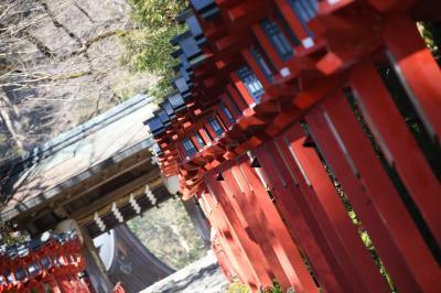 【1日目】叡山電車に乗るぞ!年始の京都の旅