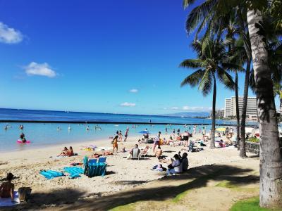 年末年始4回目のハワイ No.3