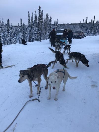 初めてのアラスカオーロラ旅行 2019年12月30 日