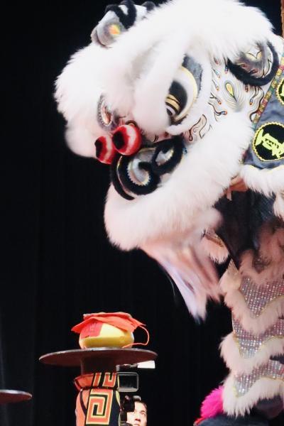 第十三回「国際獅王争覇」~シンガポール・チャイナタウン春節イベント