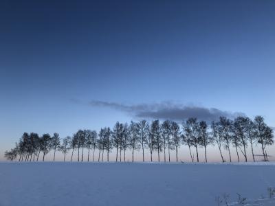冬の北海道鉄道旅と居酒屋巡り4-3(根室本線、美瑛、旭川)