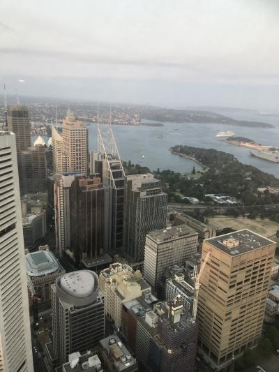 ハイドパークからシドニータワーアイへ シドニーひとり旅 2020-4