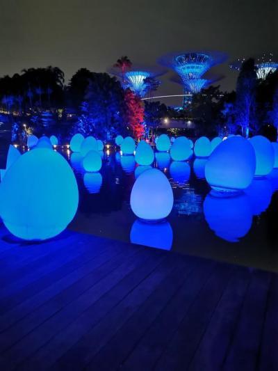 2020JGC修行を始めてみました!~OKASINでシンガポールに暮らす親戚を訪ねて~