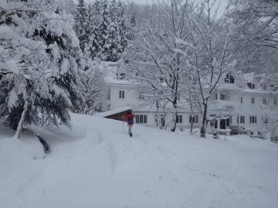 [2020年01月] お正月休みの終わりにようやく降雪、暖冬の白馬でスキー