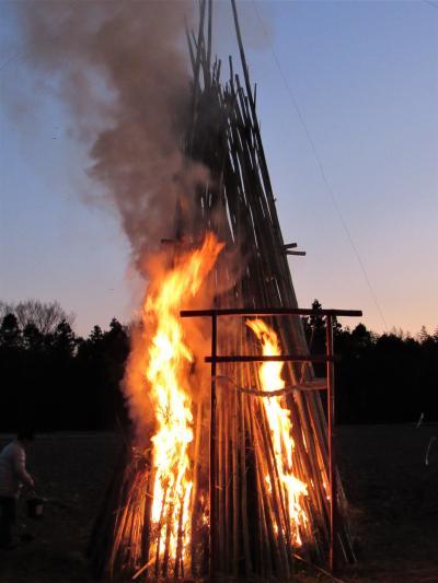 令和二年新年の神事「どんど焼き」に参加しました。次の日に白鳥の群れに会いました。