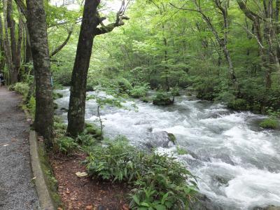 十和田湖と奥入瀬に行ってきました