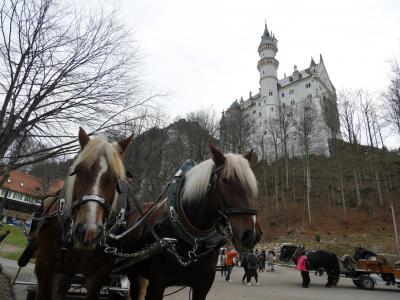 12月のノイシュバンシュタイン城