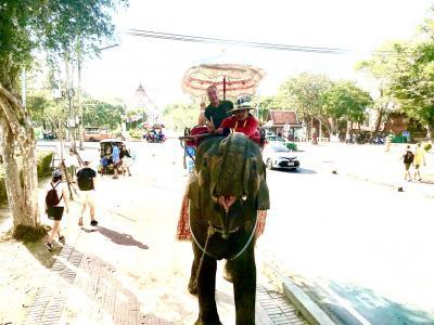 象に乗る(⌒▽⌒)