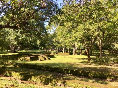 スリランカ旅行4日目 古代都市ポロンナルワ、 ダンブッラ石窟寺院、 ダンブッラからシーギリヤ