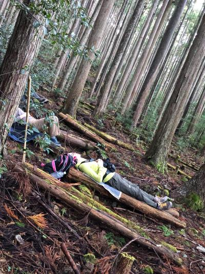 熊野古道中辺路ルートと田辺のいいとこ詰め合わせ旅/Day2-2