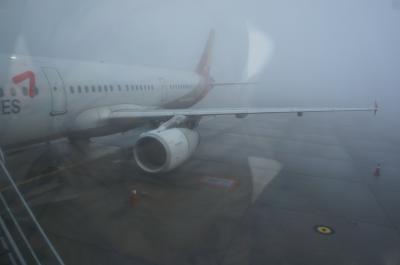 2019年12月 ソウルとフランクフルト経由でリスボンへ その1 アシアナのビジネスでフランクフルト到着まで ソウルは濃霧で飛行機遅延
