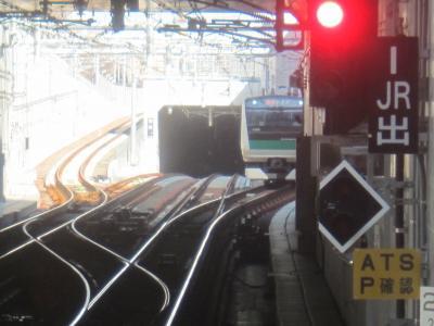 昨年11月に開業した相鉄・JR直通線に乗ってみた ついでに大和を散策してみた