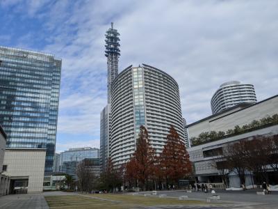 クリスマスとイルミネーションの横浜!