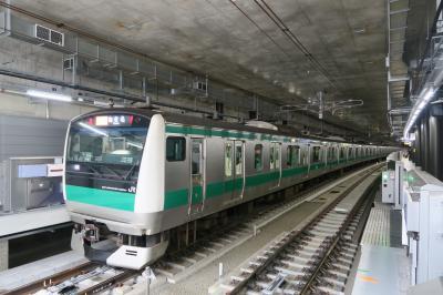2020.1 大回り乗車で羽沢横浜国大と乗りのこし整理 -JR線全線乗りつぶし-