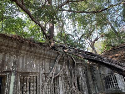 東南アジア世界遺産の旅カンボジア①