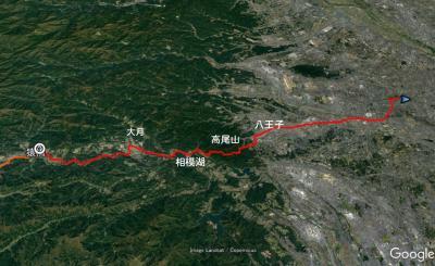 冬の富士五湖で車中泊を楽しみながら東京へ(6/8)東京到着、小金井公園と平林寺に案内されて